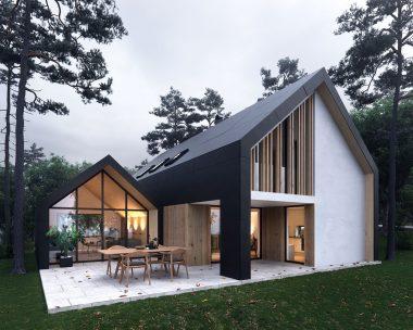 arhein-arhitektura-projekti-Hisa-S-Paviljonom-Terasa
